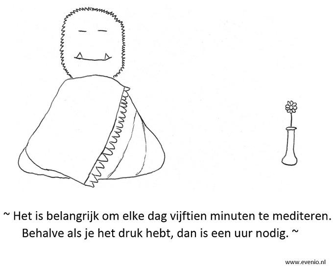mindfulness-boek-mediteren